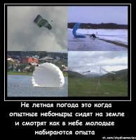 post-8473-1368251688_thumb.jpg